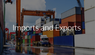Import & Export Services